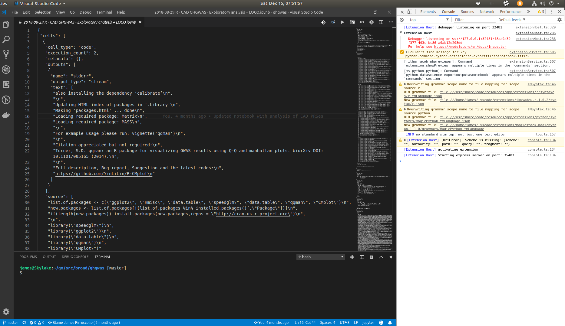 vscode-python conflicts with Jupyter notebook preview