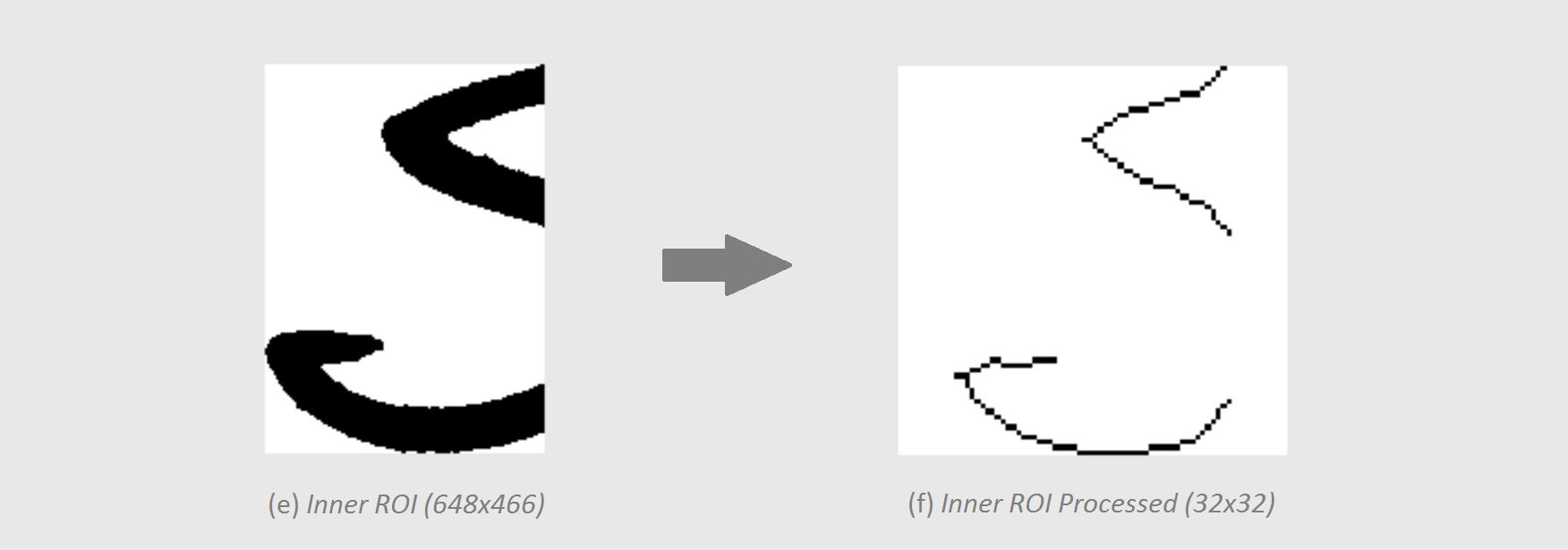 roi_processing