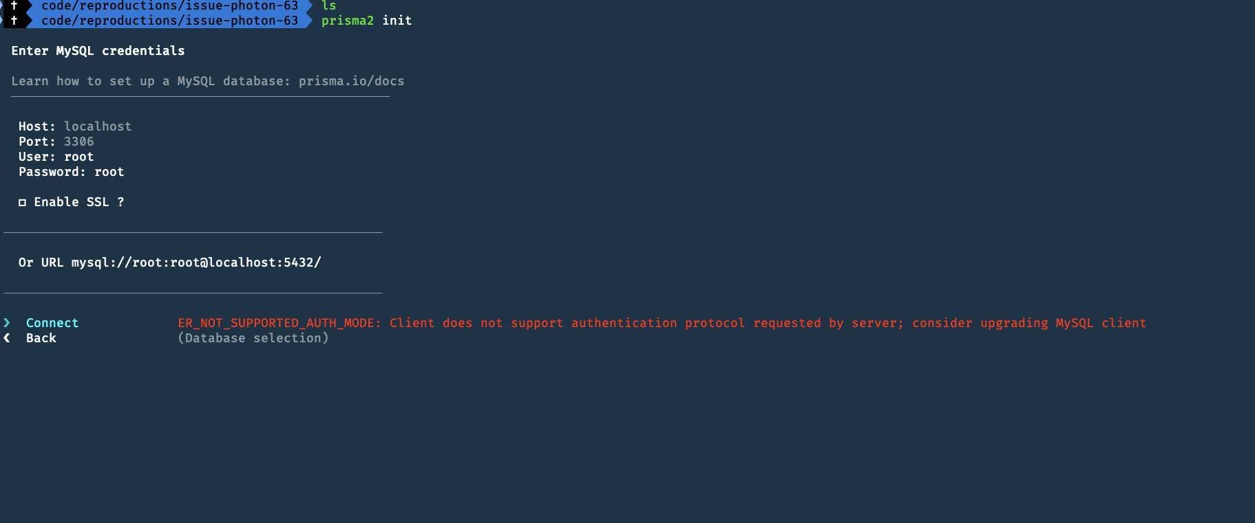 prisma2 init' with mysql leads to react error · Issue #46
