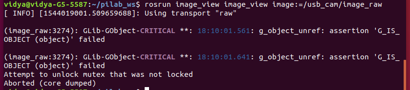 image_view: Attempt to unlock mutex that was not locked