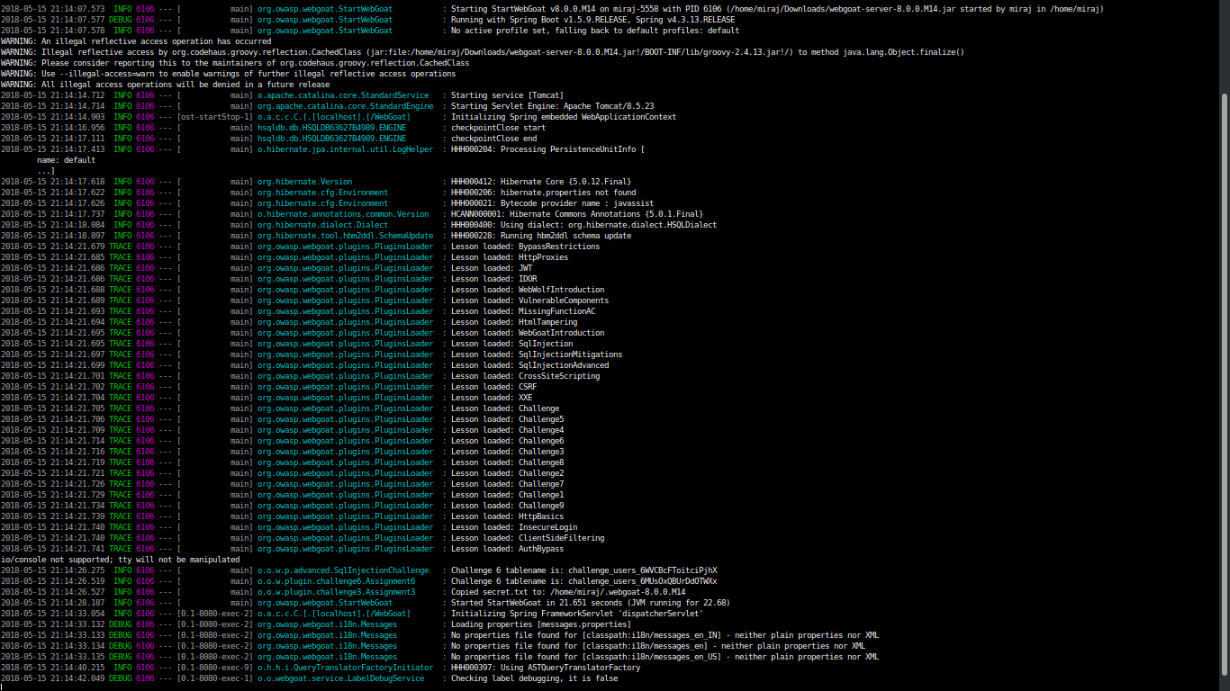 WebGoat 8 0 0 Windows installation and errors logging into