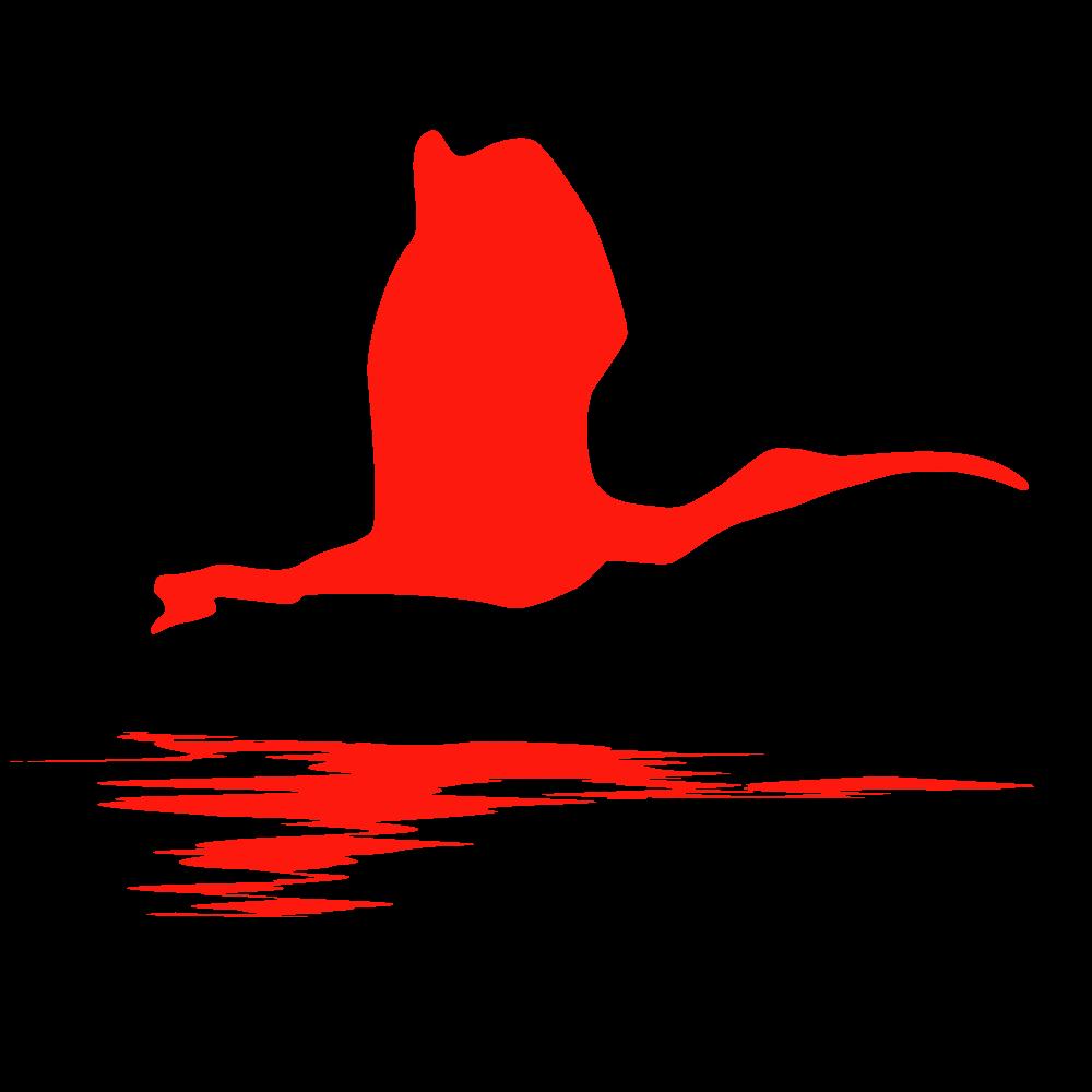 ibis-logo-ripple