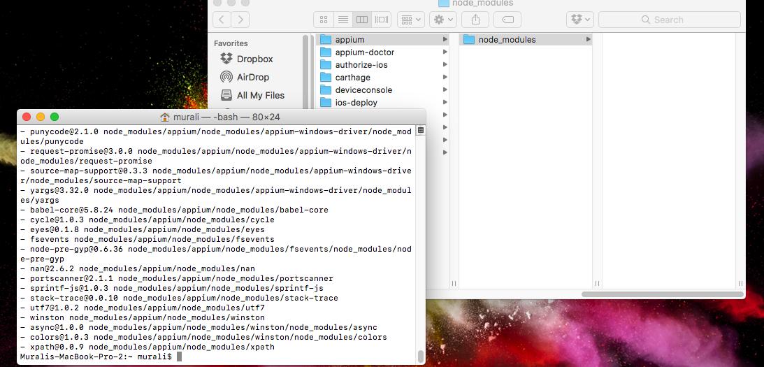 """Developers - The file """"WebDriverAgentRunner-Runner app"""