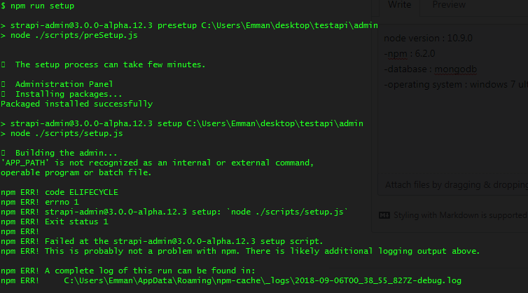 npm run setup error 'APP_PATH' is not recognized as an
