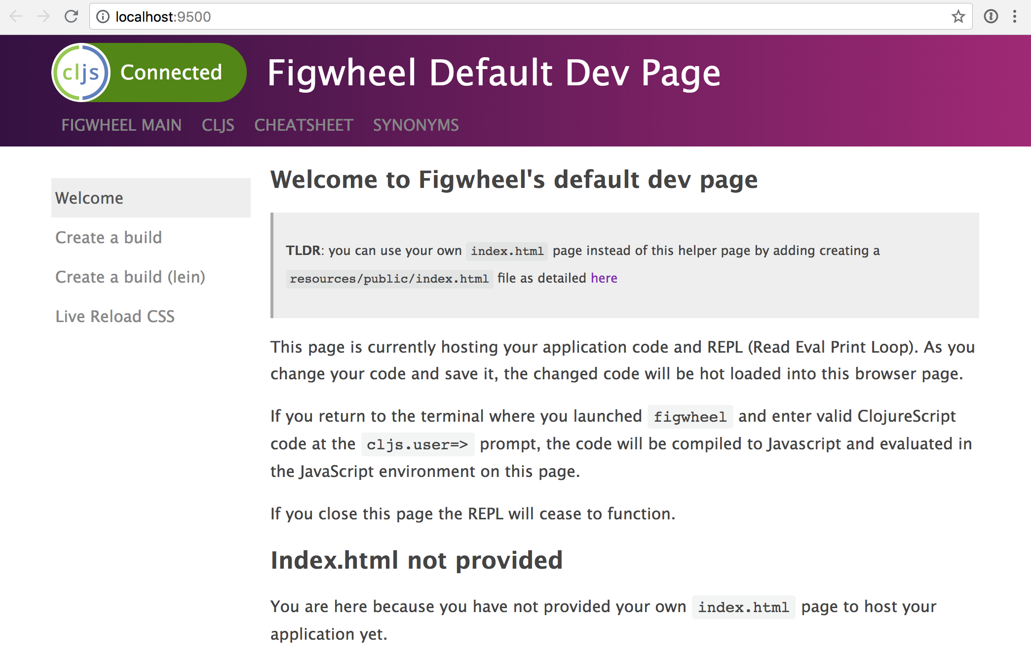 default dev page