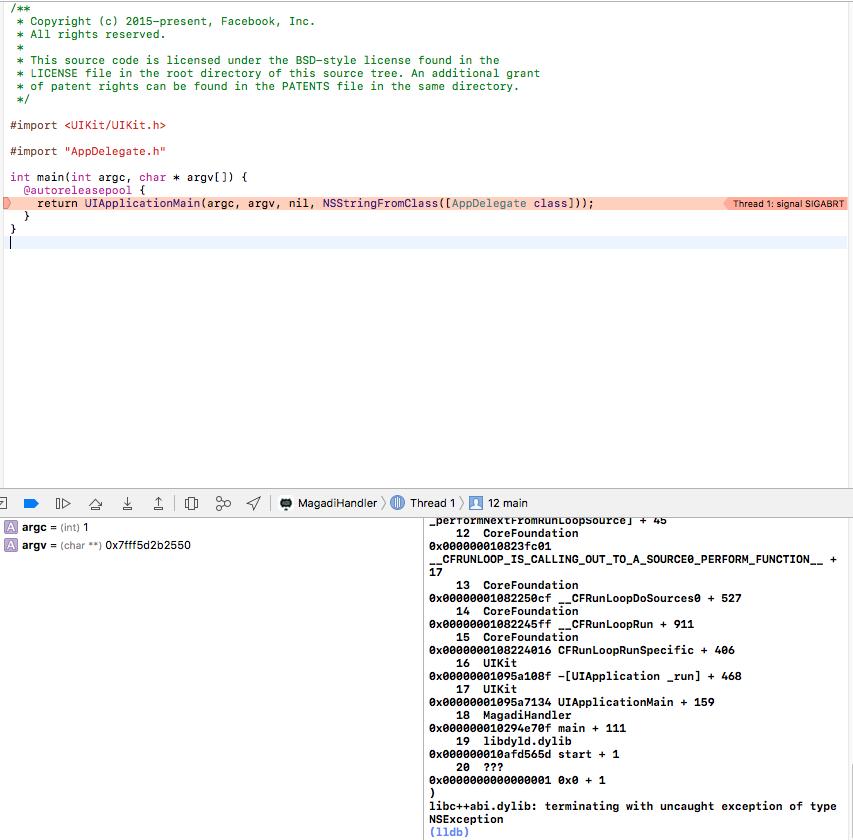 App crash on startup - (libc++abi dylib: terminating with uncaught
