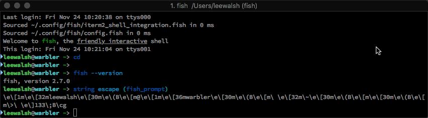 iterm_fish_shell_prompt_paste_bracketing-270