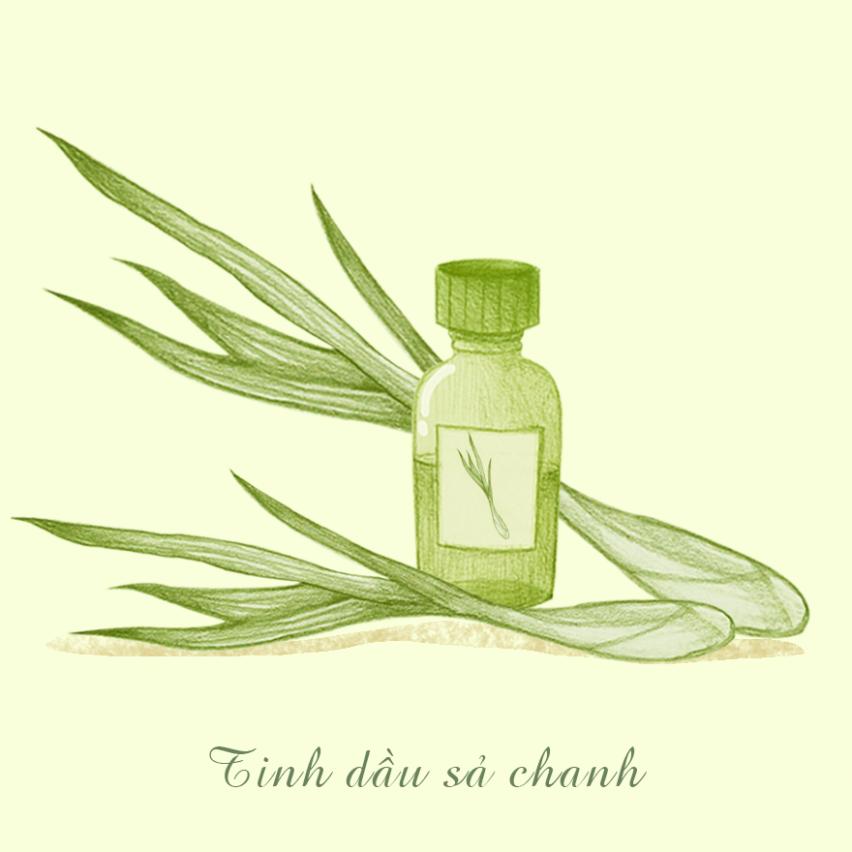 cách làm đẹp với tinh dầu sả chanh