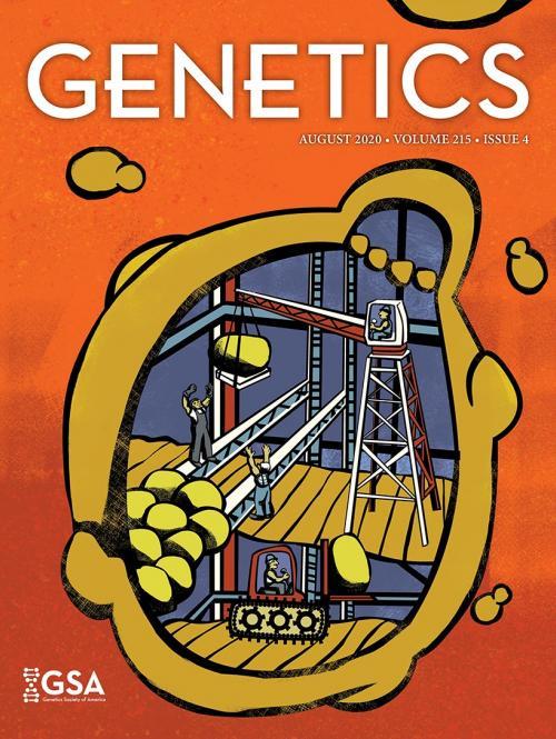 Genetics_Cover