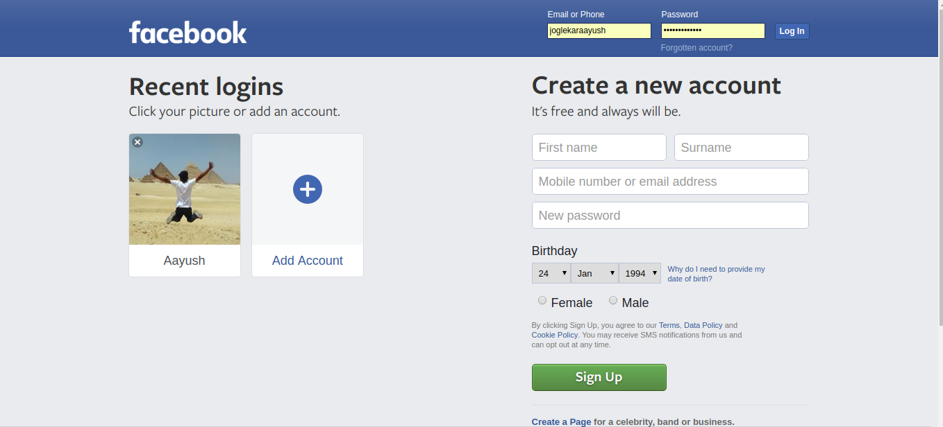 Interface Task 4 - Facebook Login Page (Strictly using CSS