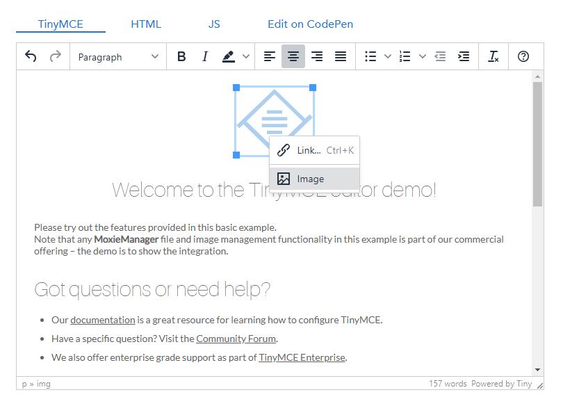 v8: TinyMCE image tools · Issue #5046 · umbraco/Umbraco-CMS · GitHub