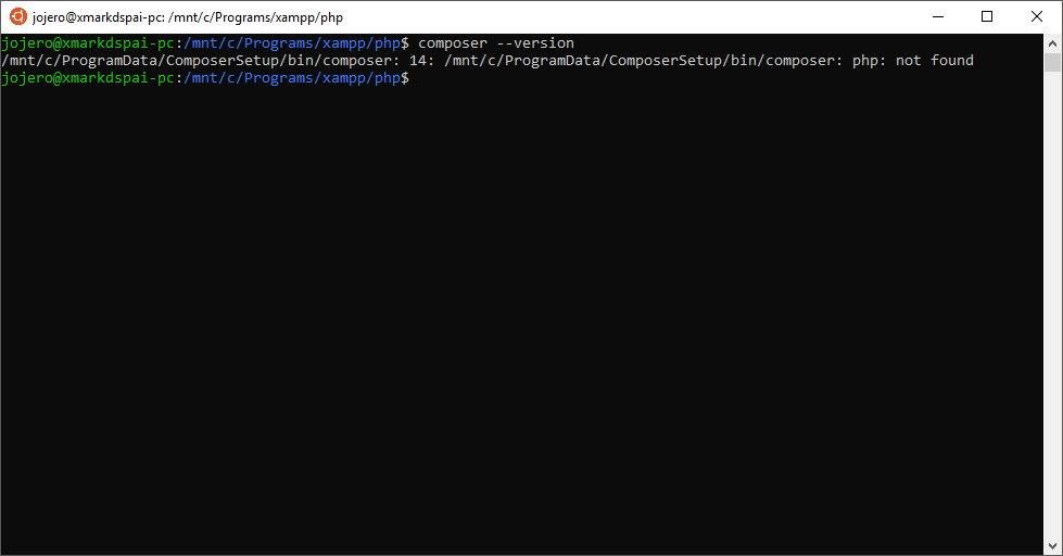 Cannot access Composer / PHP installed in Windows from WSL