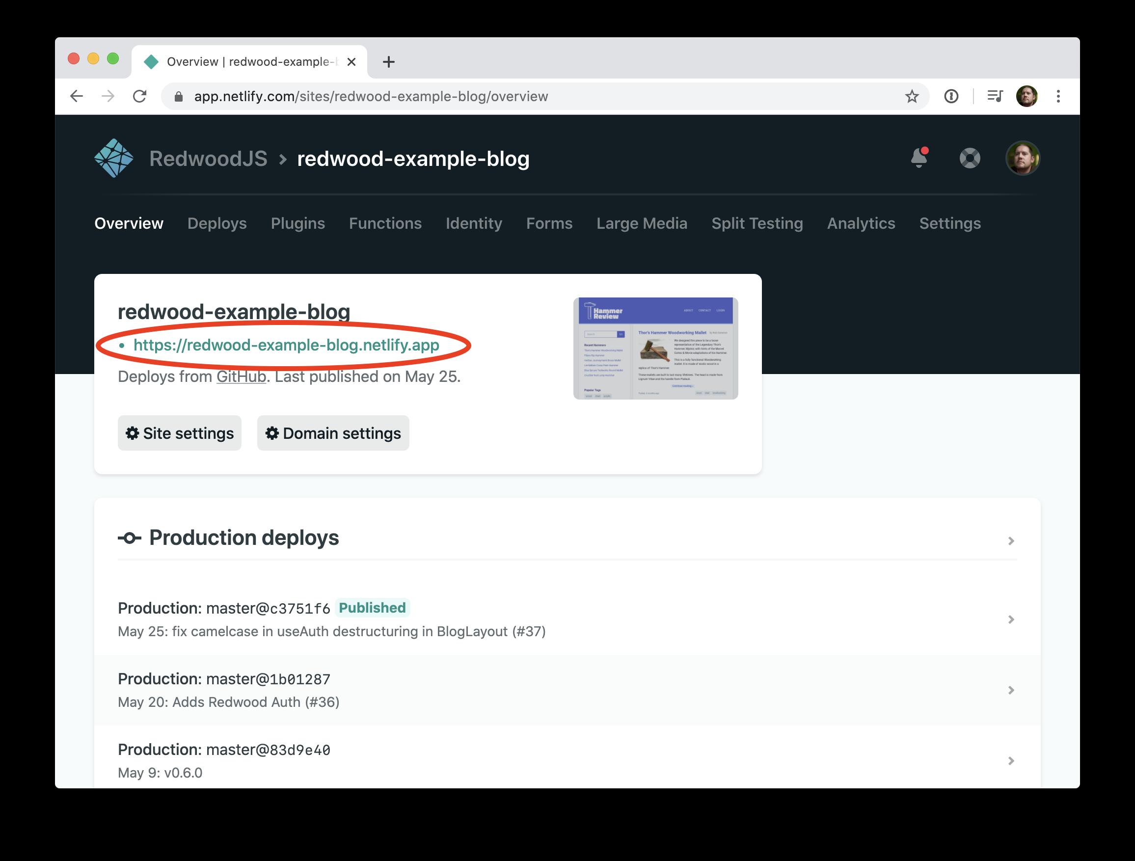 Netlify URL