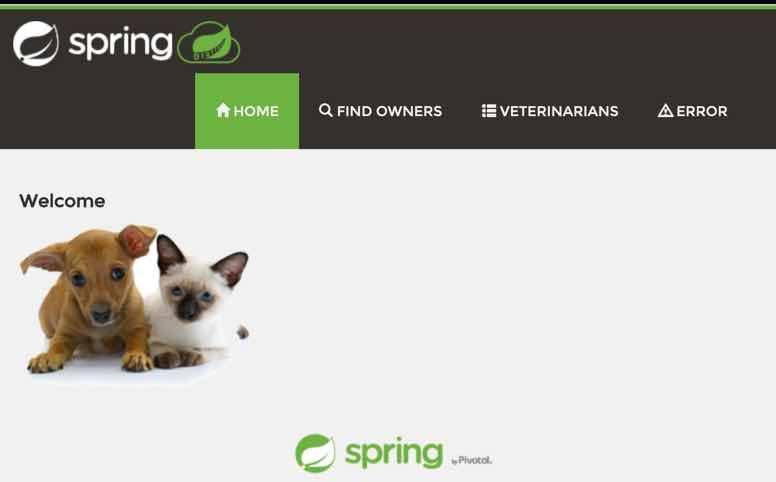 spring-jpetstore-776x482-11626