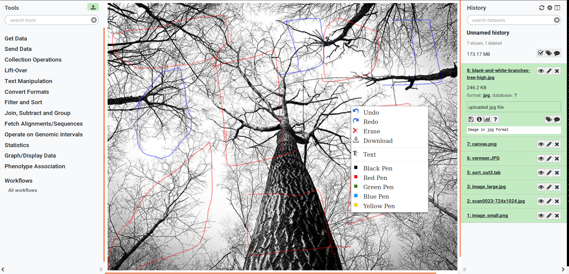 image annotation screenshot