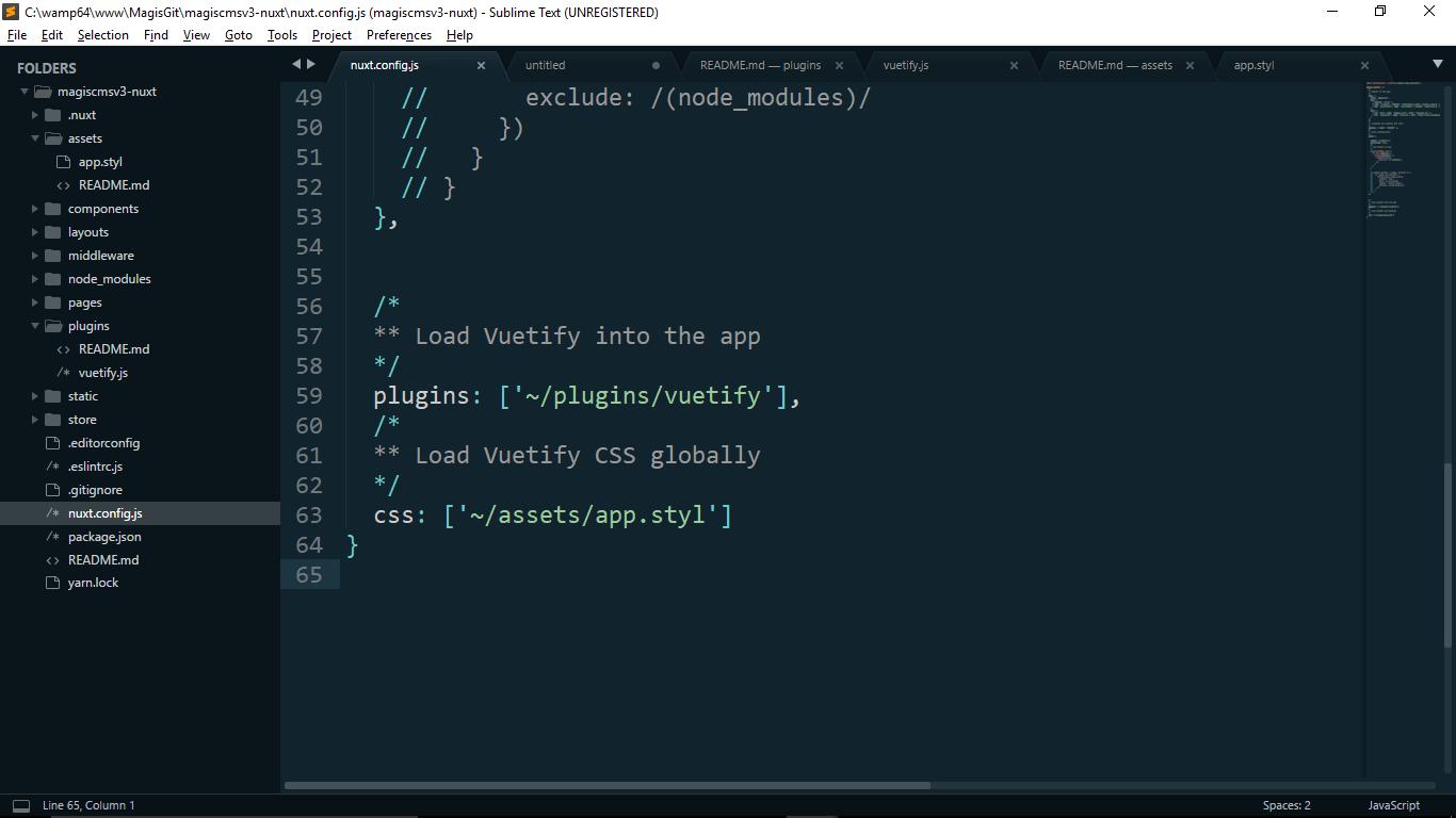Nuxt Vuetify Theme