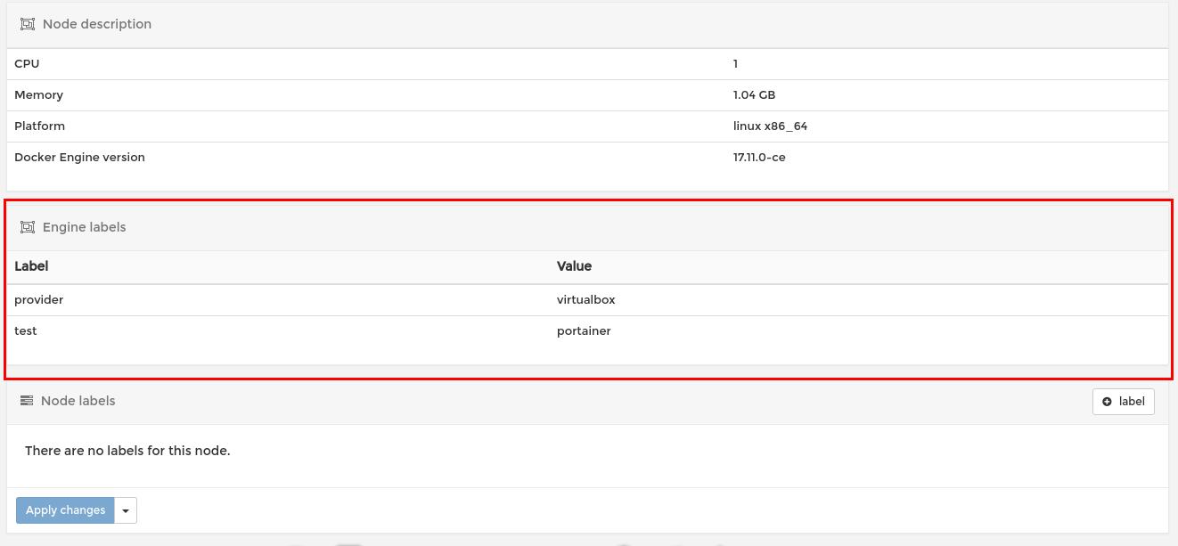 Swarm nodes details should show also engine labels · Issue