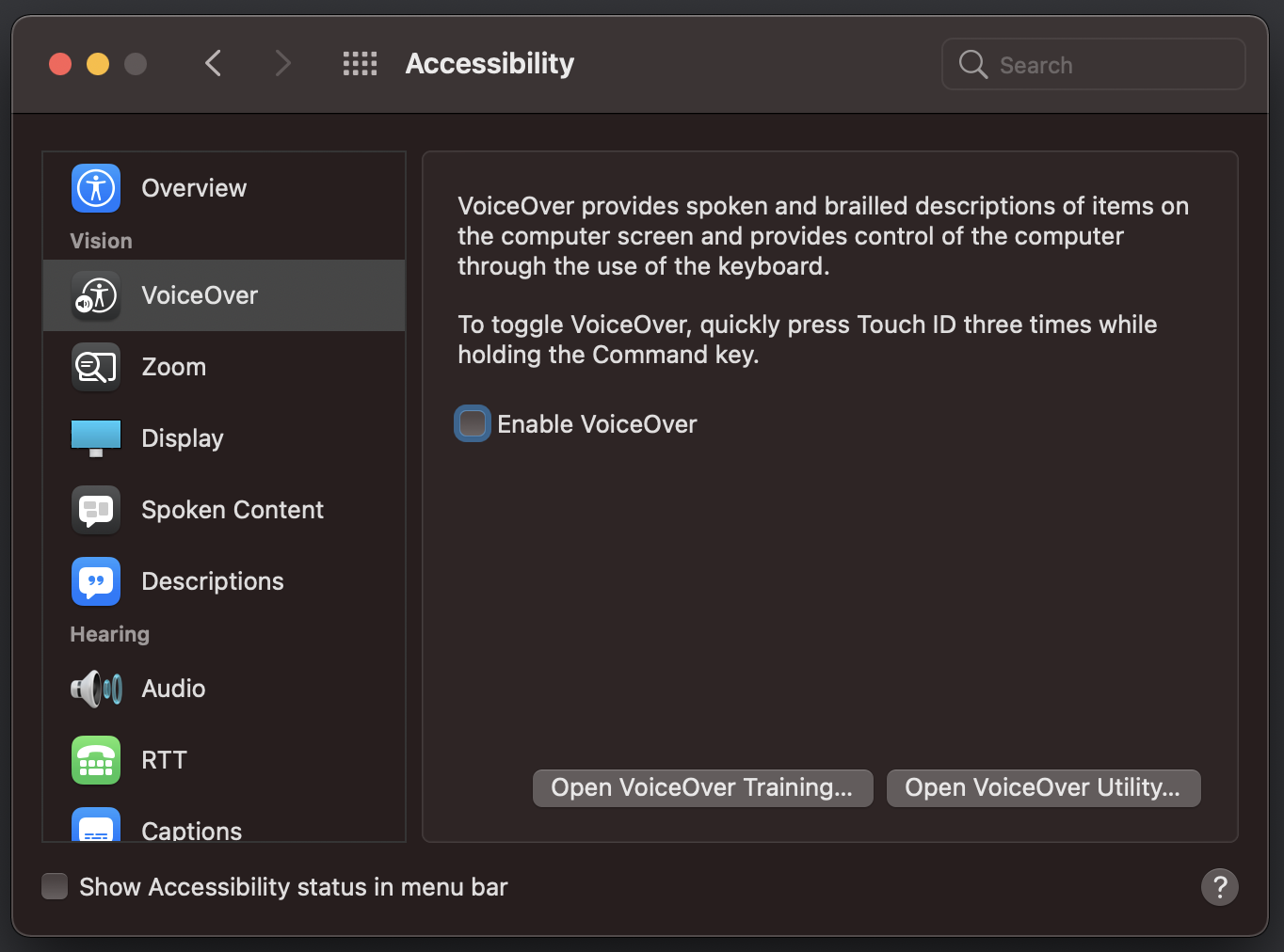 macOS accessibility preferences panel