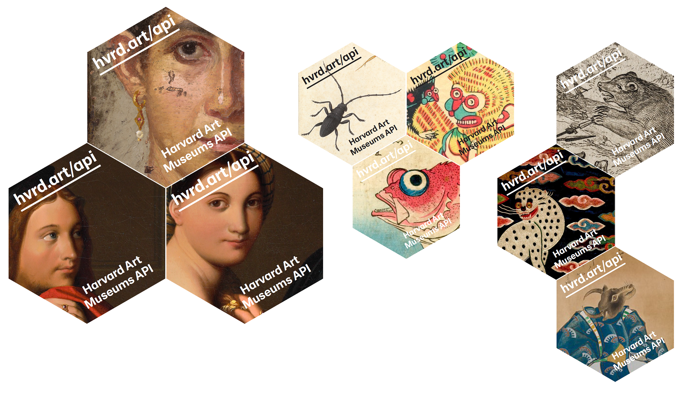 A collage of nine hexagons each containing a part of an image from the musuem's collection