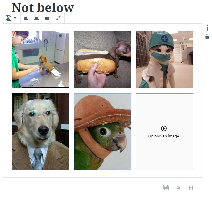 not_below