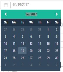 Datepicker issue  can't select year 1991 by one click