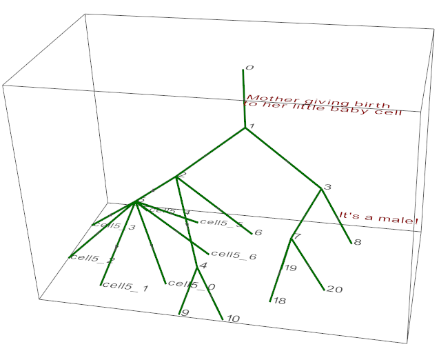 lineage_graph.py