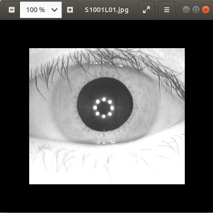 yolo image segmentation and yolo compress(prune)