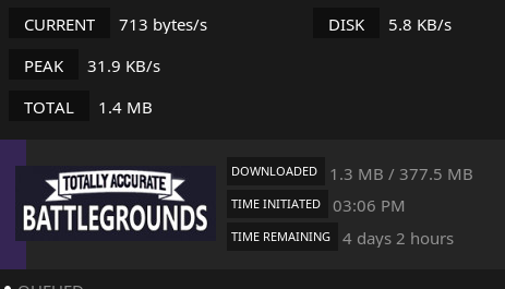 BUG] A year later and steam still has DNS issues  · Issue