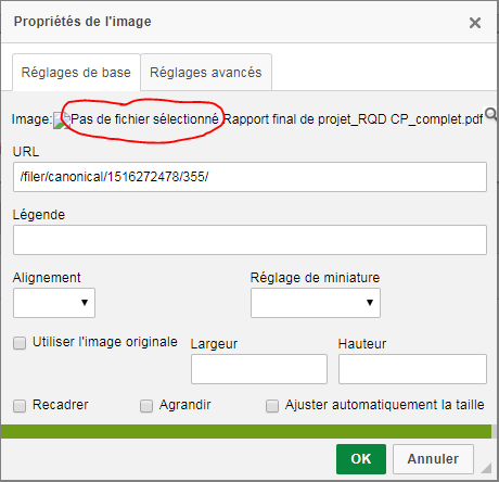 pdf upload · Issue #34 · nephila/django-ckeditor-filebrowser