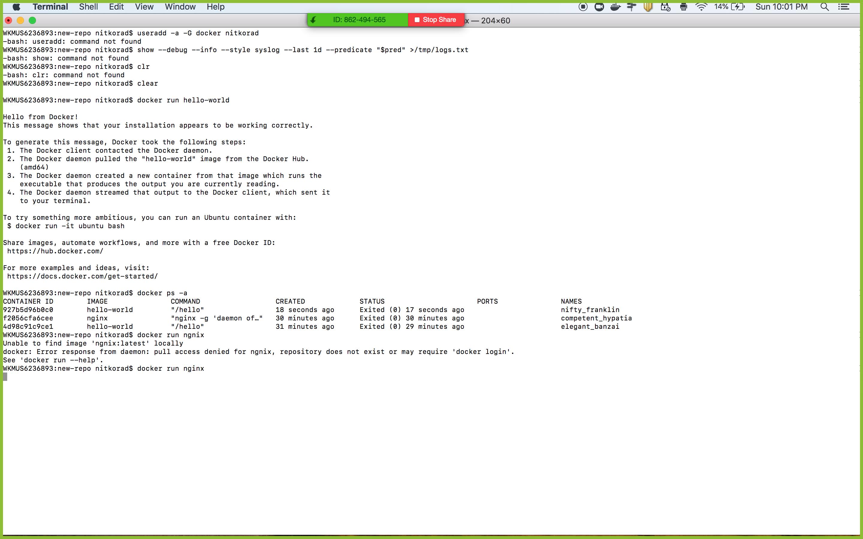 Docker run commands not working in MAC · Issue #3400 · docker/for
