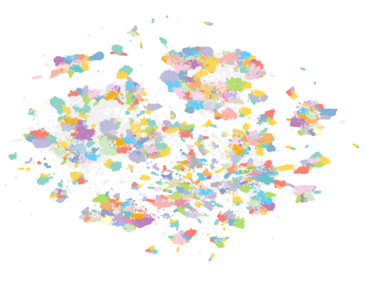 Figure 3: Final 2D representation of the embeddings after further splitting of each cluster. Each colored group represents a subcluster found by HDBSCAN for a particular cluster. Spread grey points were identified as noise.