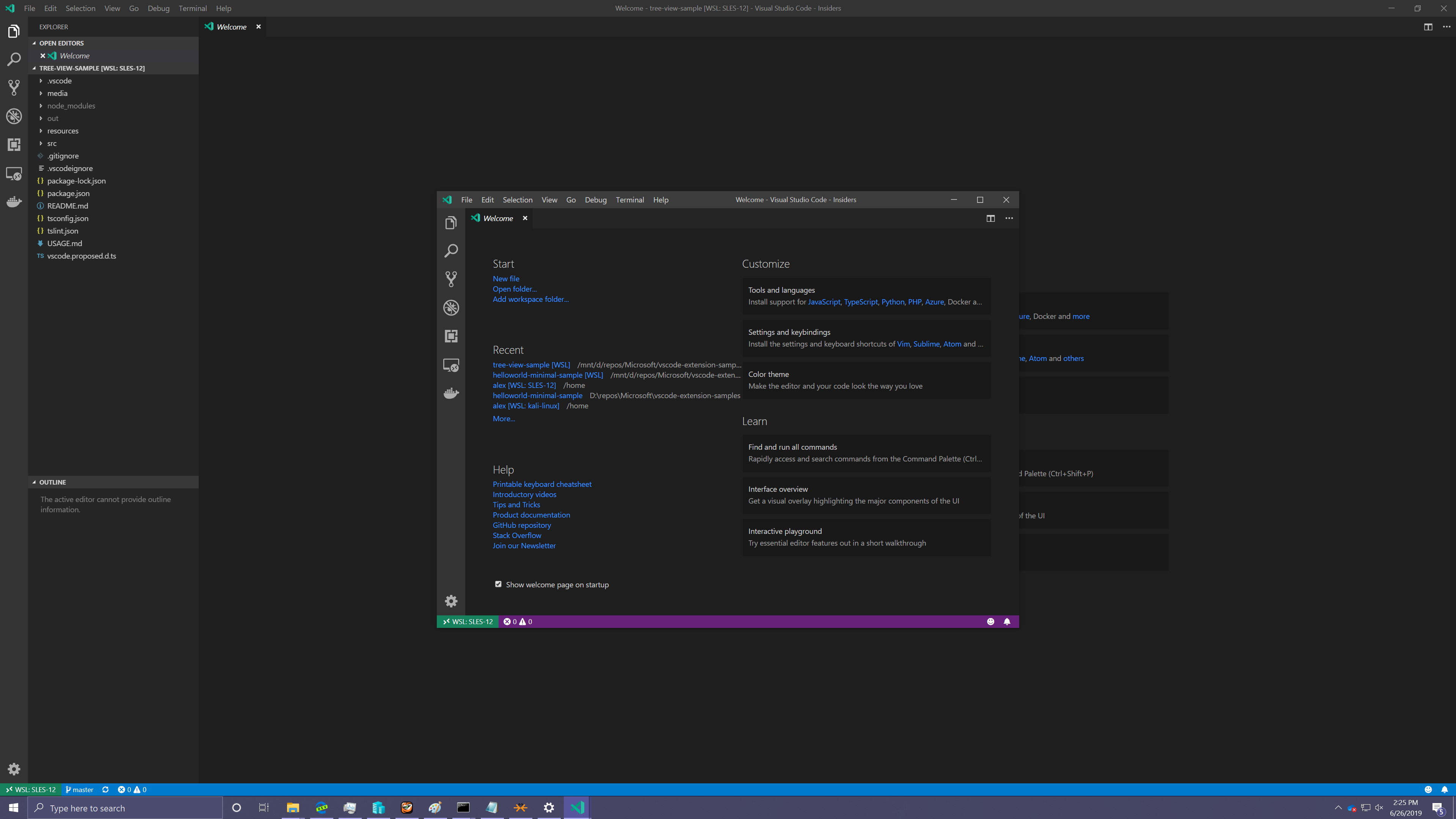 WSL windows started with code-insiders   have generic labels