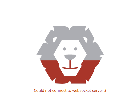 Could not connect to websocket server · Issue #45