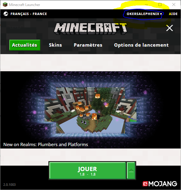 Login to Mojang account good but not likely to be premium · Issue