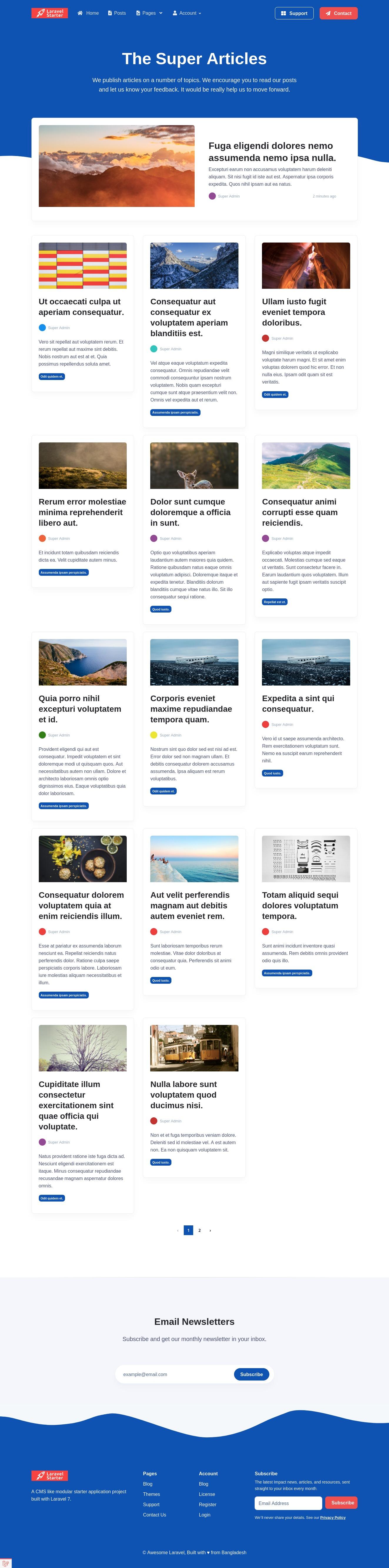 Laravel Starter Posts Page