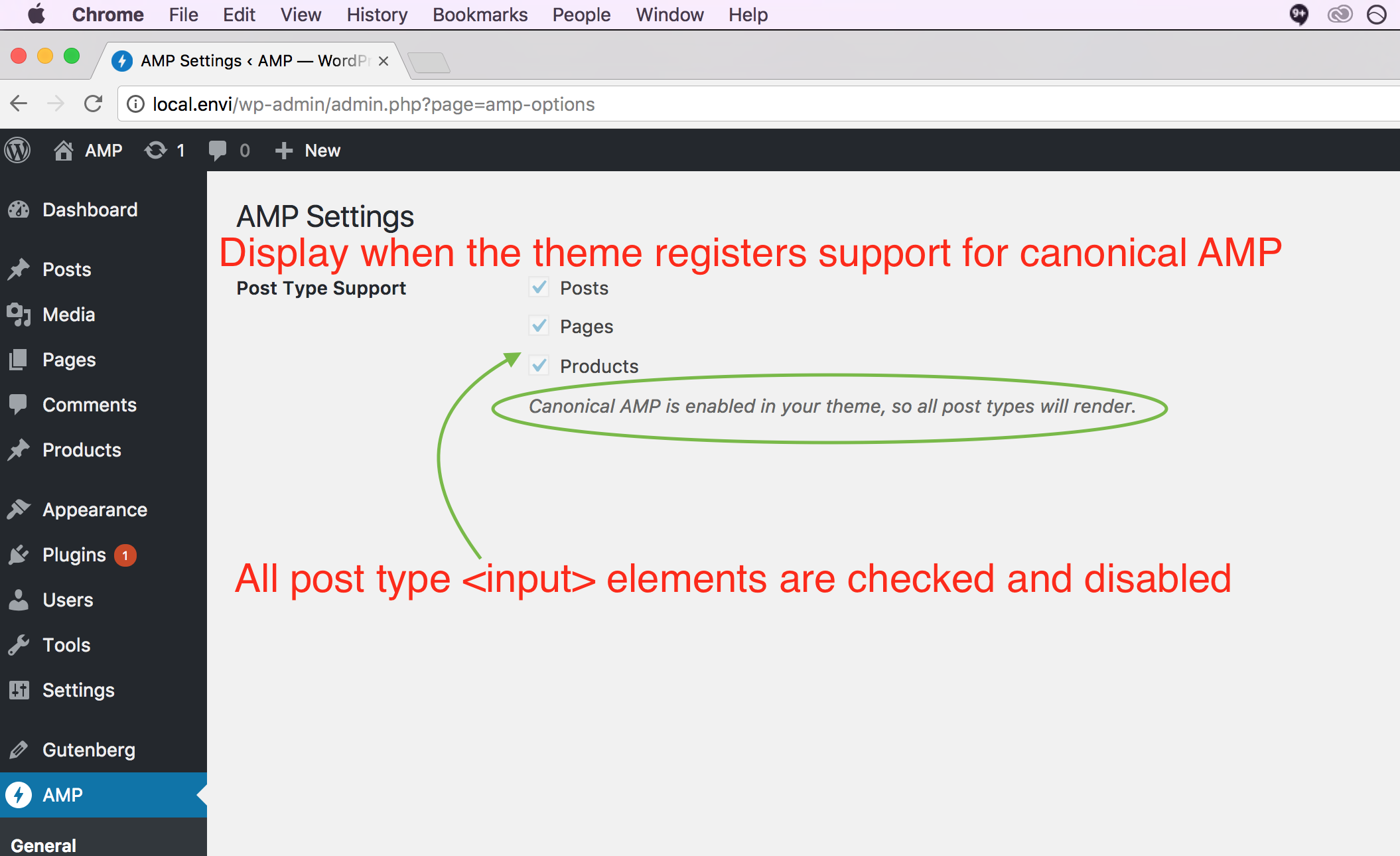 theme-registers-support-canonical-amp