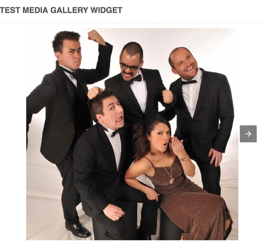 new-media-gallery-widget
