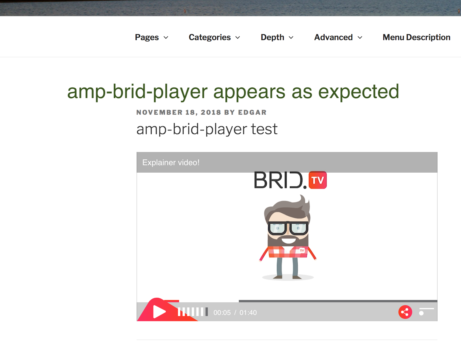 amp-brid-player-test