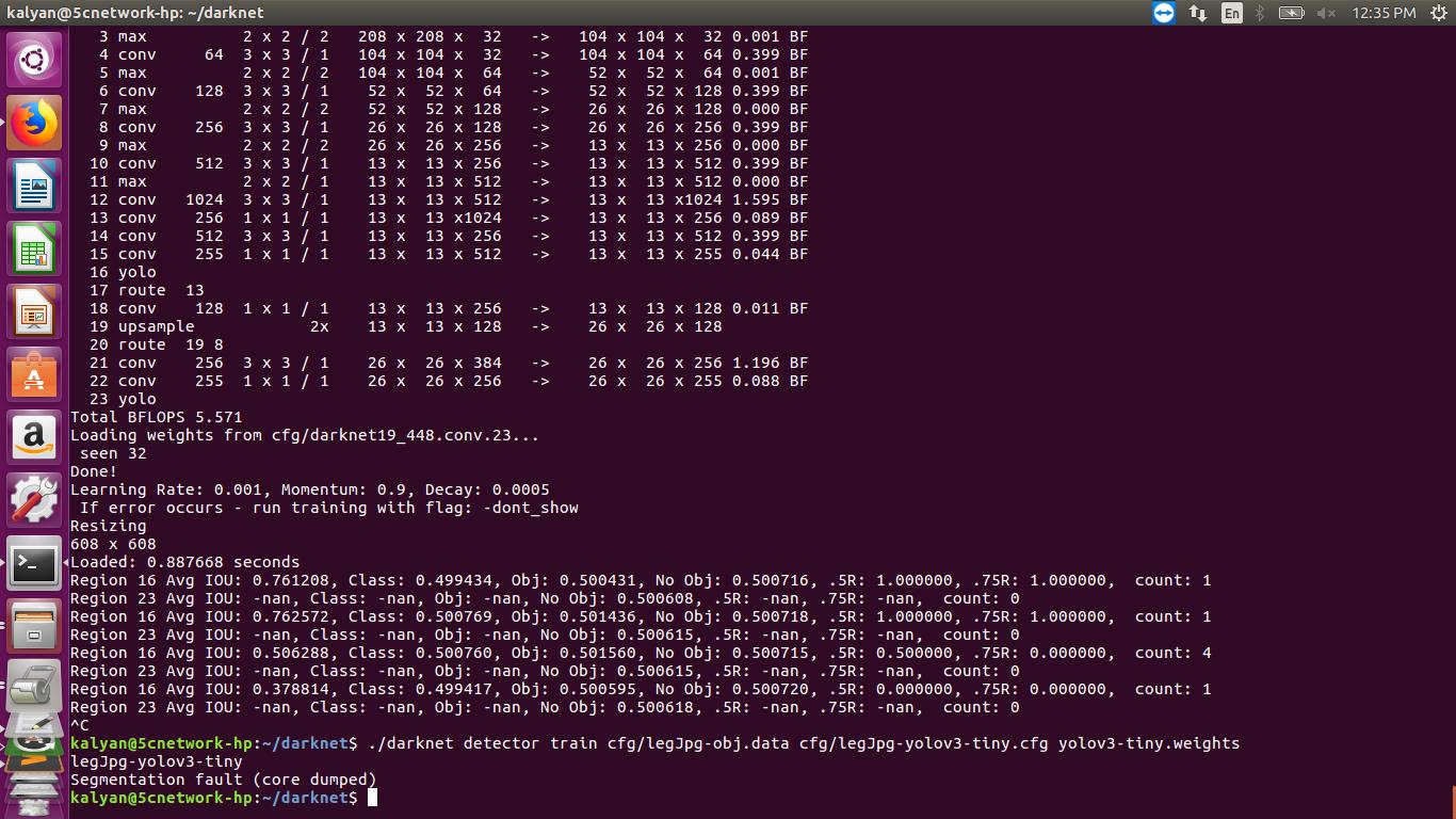 Segmentation fault (core dumped) in training own data yolo2 darknet