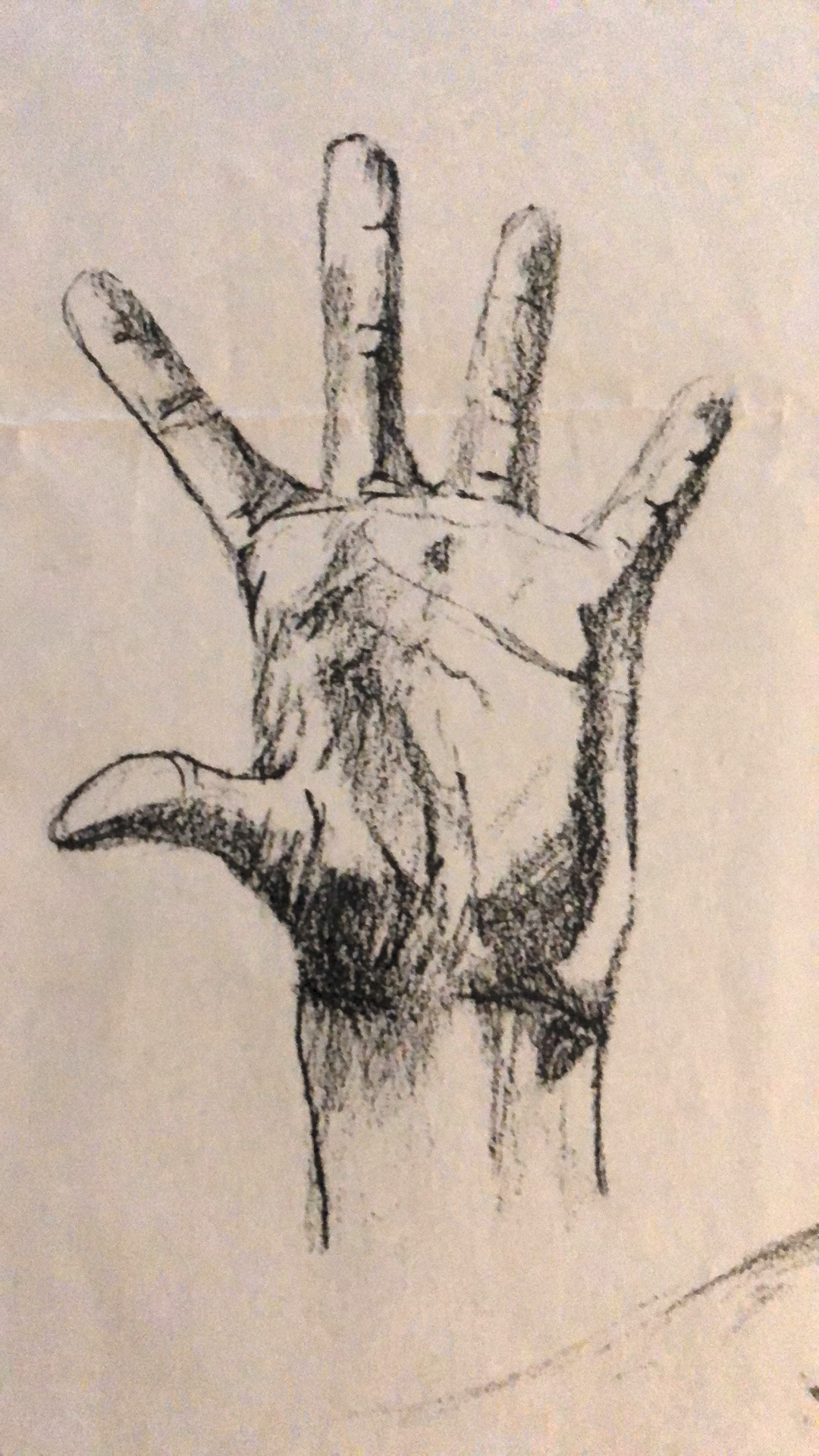 42_hand-sketch-97