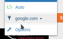 FEATURE REQUEST] Autofilter with host (not only domain)  · Issue