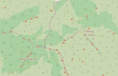 z13-cabeza-del-viejo-aretes-forest-improved