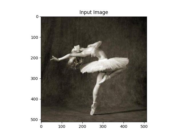 sphx_glr_neural_style_tutorial_003
