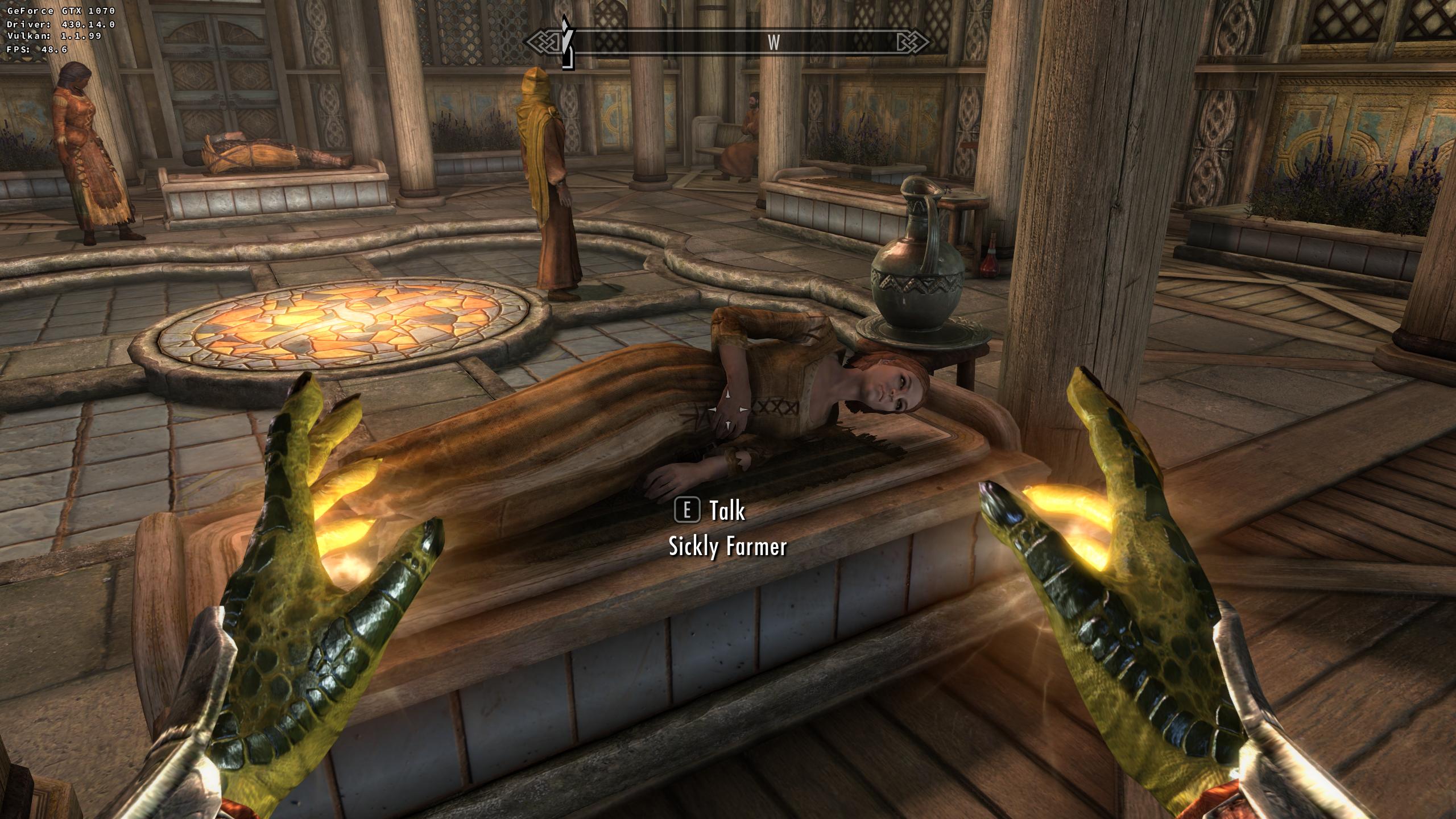 Developers - The Elder Scrolls V: Skyrim Special Edition