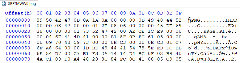 $R 파일 구조 in HxD