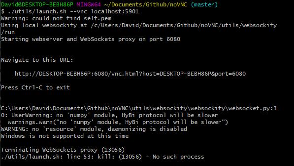 Russian ip web proxy