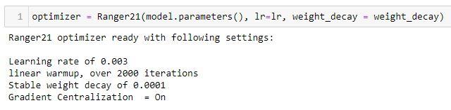 Ranger21_initialization