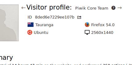 visitor profile