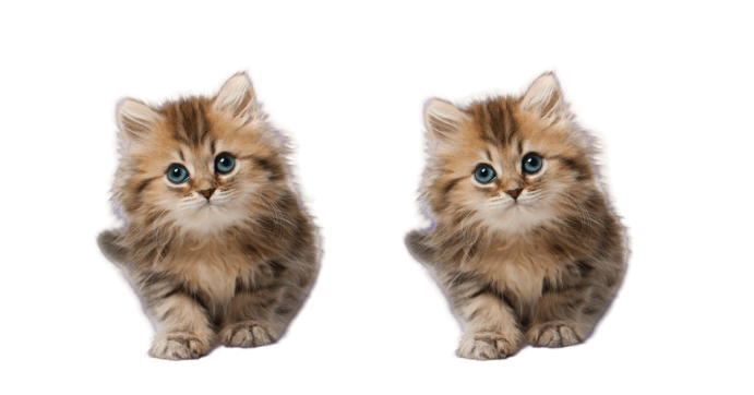 LSB substitution cat image difference