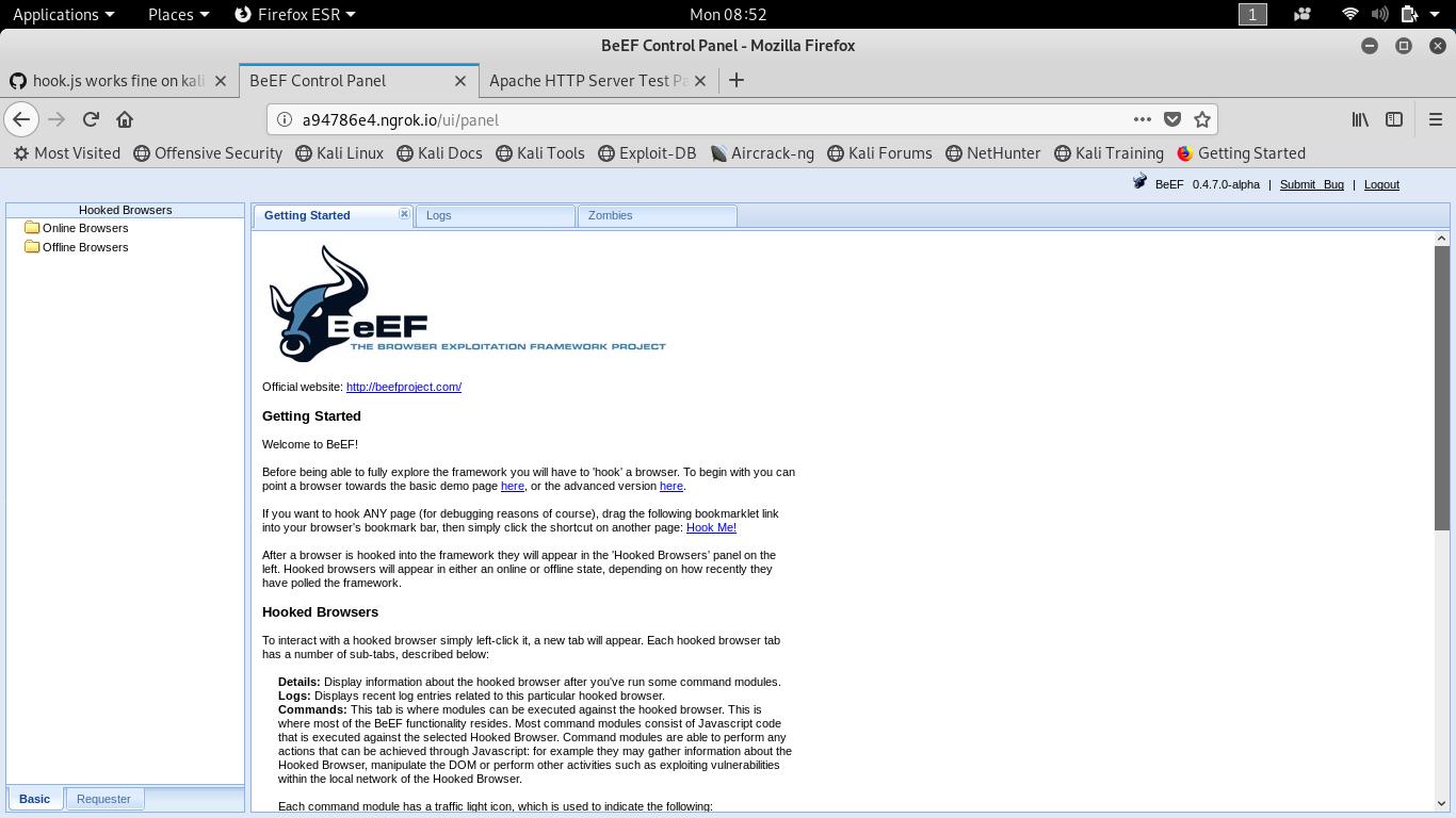 hook js works fine on kali linux browser over wan (GET 200) , But in